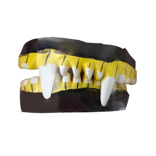 1 Ad Takma Vampir Dişleri Cadılar Bayramı Hallowen Şaka Malzemesi