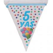 1 Adet 10 Bayraklı 5 Yaş Bayrak Flama Mavi Erkek 2.2 m Doğum Günü
