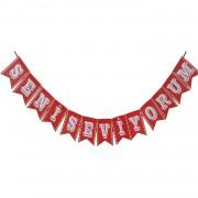 1 Adet Kurdeleli Seni Seviyorum Yazılı Şekilli Kırmızı Harf Flama