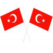 50li Türk Bayrağı Baskılı Çubuklu Bayrak