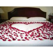 Sevgiliye Sürpriz Oda Hazırlama, Gül Yaprağı, Kalp Mum Süs Seti